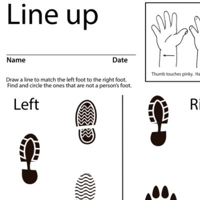 Line Up Lesson Plan Screen Shot Sign Language