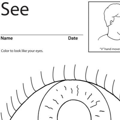 See Lesson Plan Screenshot Sign Language