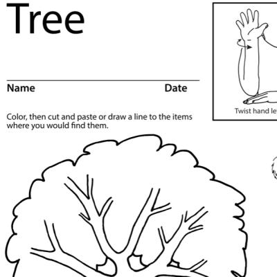 Tree 2 Lesson Plan Screenshot Sign Language